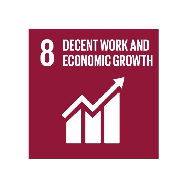 goal eight: decent work and economic growth