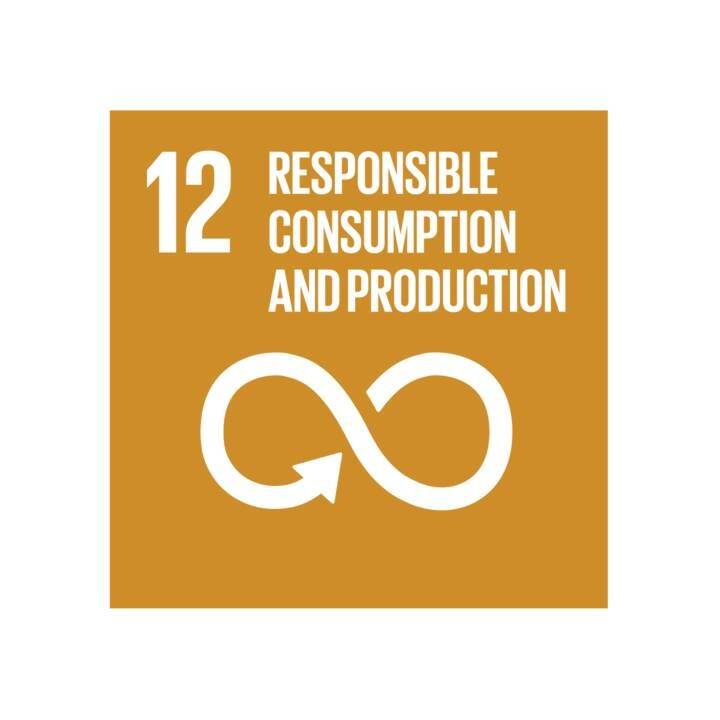 Goal twelve: responsible consumption and production
